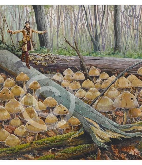Mahargs Autumn visit to Weavewood